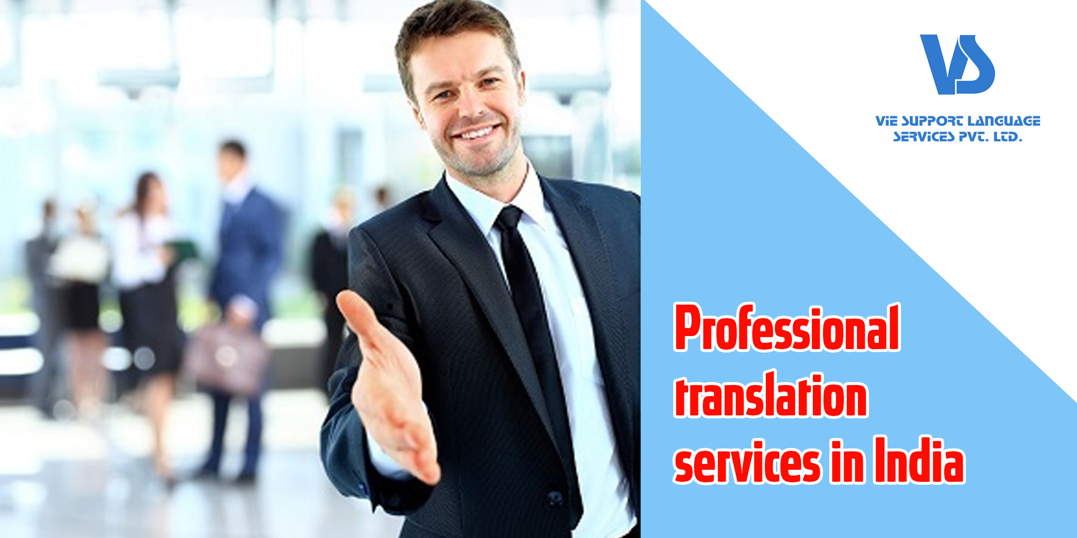 professional translation services in india vie support
