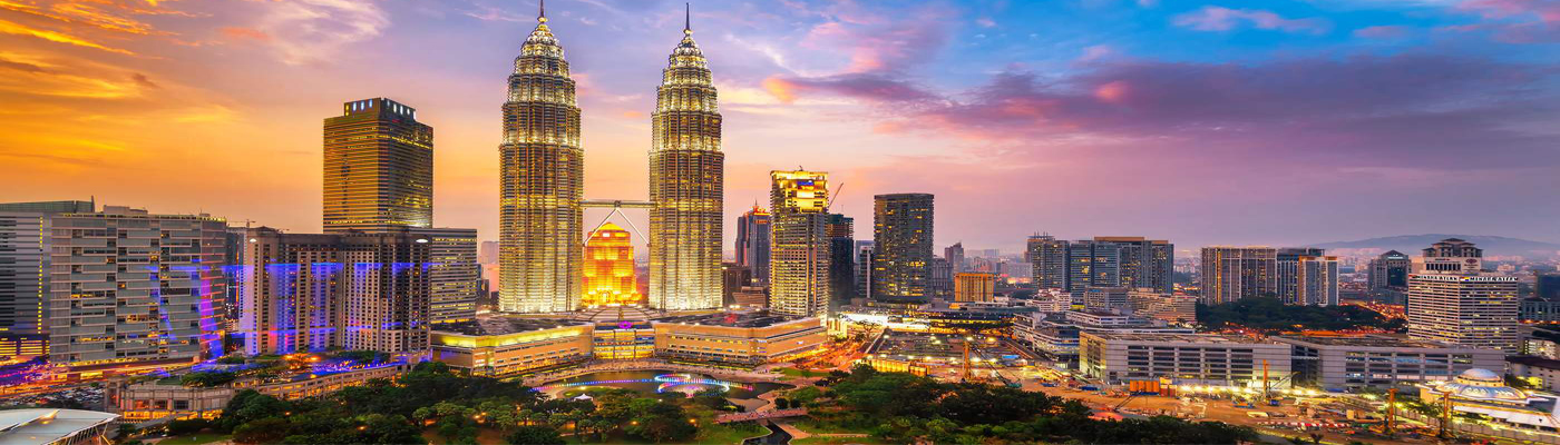 Professional Services in Malaysia