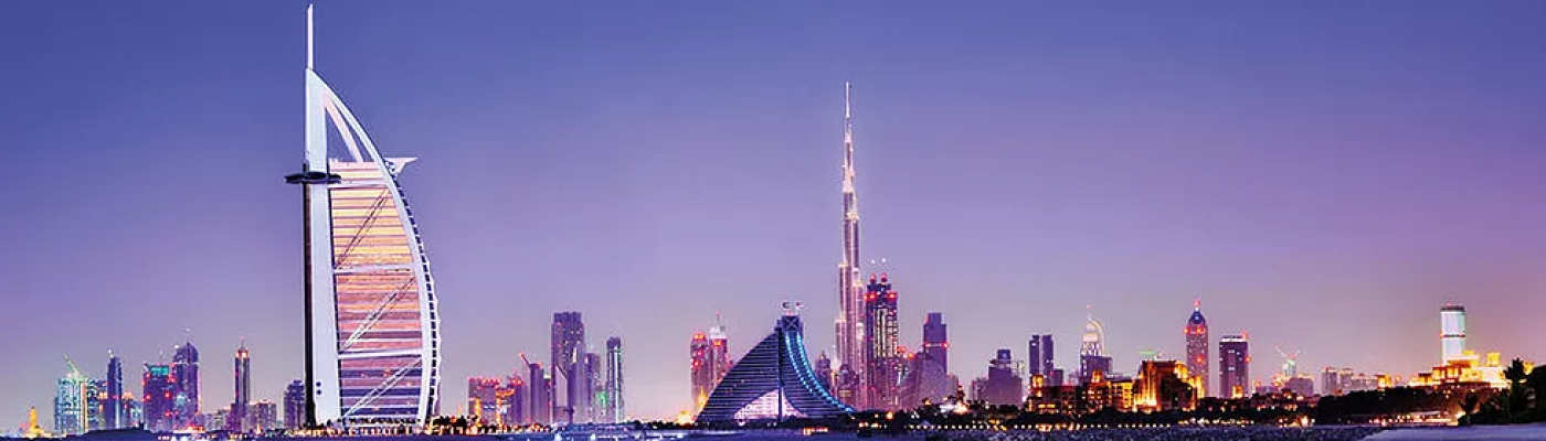 Professional Services in UAE